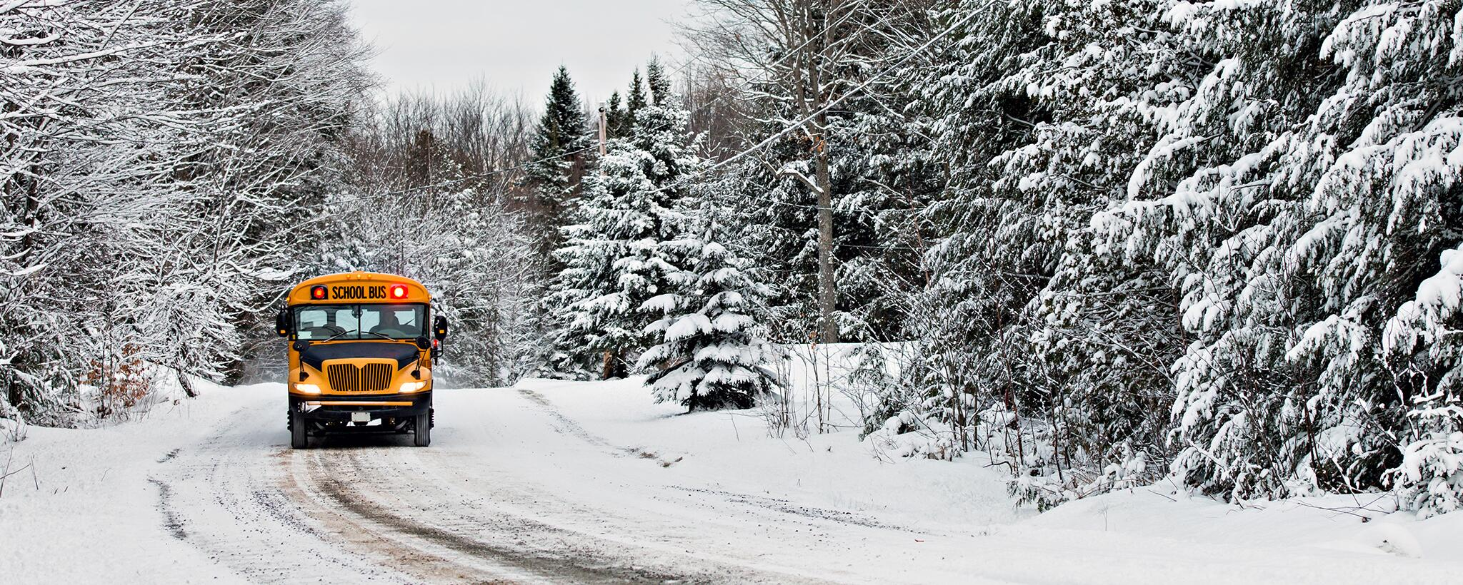 a school bus approaching on a snowy road surrounded by snow covered trees.