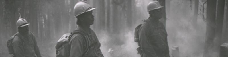 July 28th, 2000. Firefighters stand in a forest holding chainsaws in an attempt to control a wildfire.