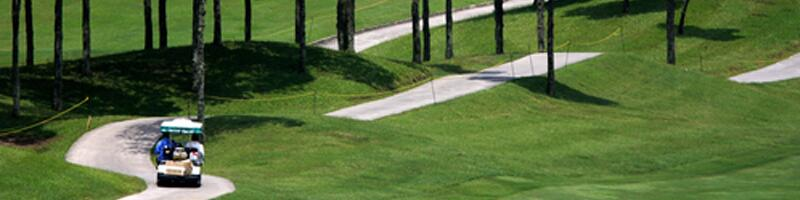 August 27th, 2011. A person driving a golf court along the course.