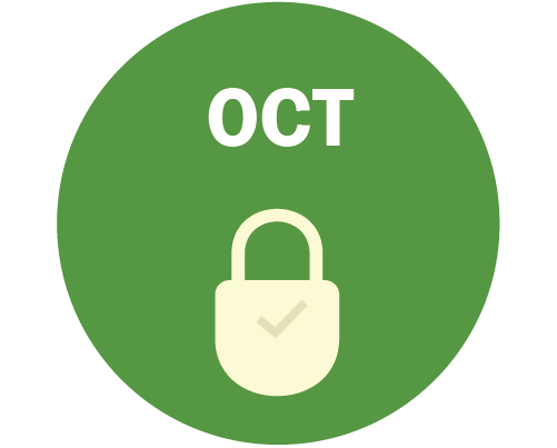 OCT Graphic - lock with a checkmark on it