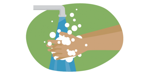 Illustration of two hands being washed with soap under a faucet.
