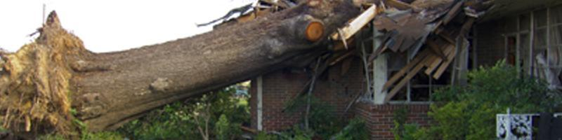April 27th, 2011. A large, fallen tree lays upon a destroyed single family home's roof.