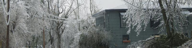 January 28th, 2009. Trees, power-lines, roads and roofs bend and break under the sheer weight of snow and ice.